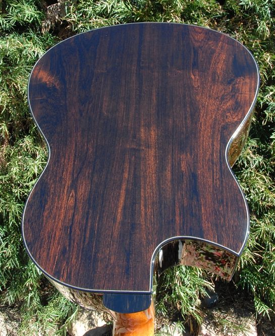 Greenfield G2 Guitar African Blackwood back