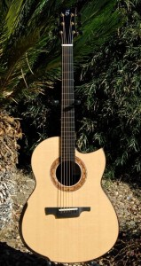 Greenfield G2 Guitar back readers photos