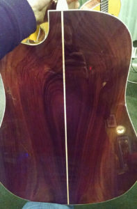 Martin Experience Indian rosewood back