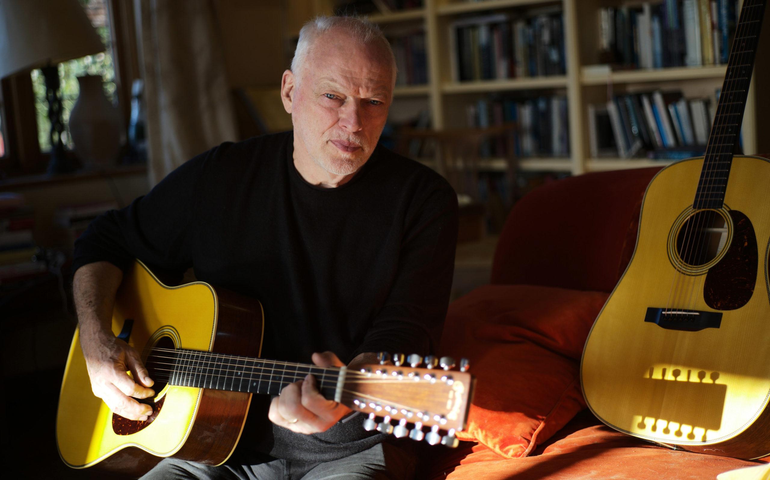 Martin D-35 David Gilmour 12 String Guitar onemanz portrait