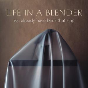 Life in a Blender