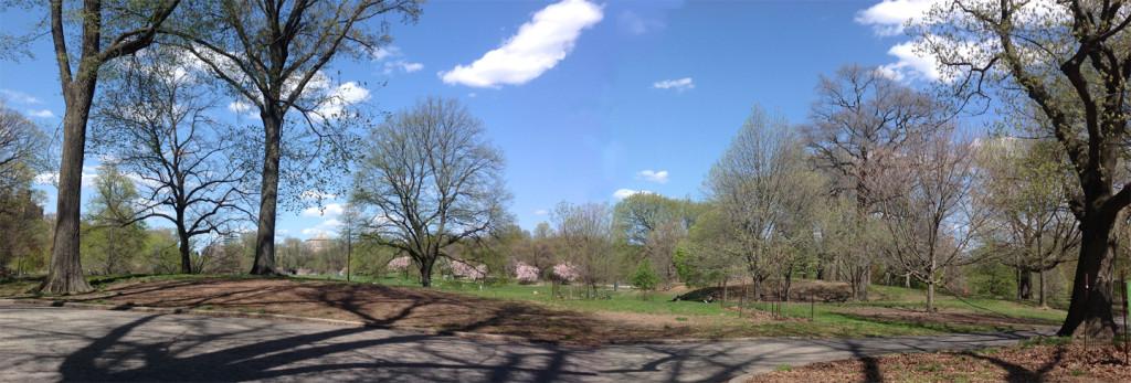 Propsect Park Long Meadow