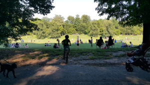 Nice Afternoon in Prospect Park