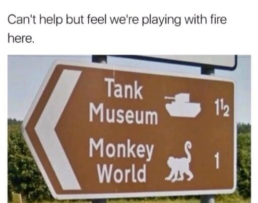 tank monkey onemanz